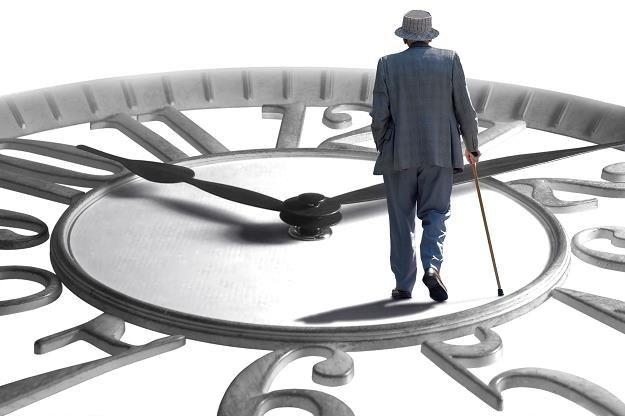 Niemcy będą musieli pracować nawet do 70. roku życia /©123RF/PICSEL