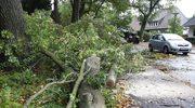 Niemcy: Orkan Ksawery nadciąga. Nie działają koleje