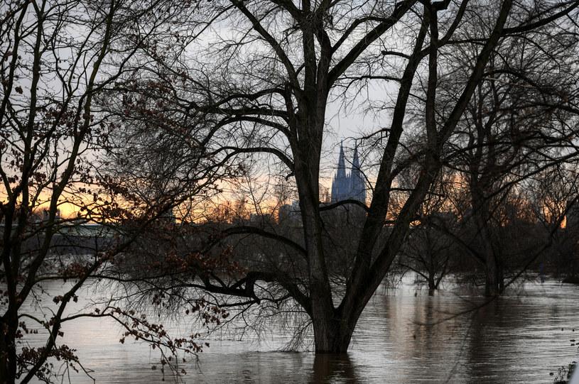 Niemcy przygotowują się na nadejście potężnego orkanu /INA FASSBENDER / AFP /AFP