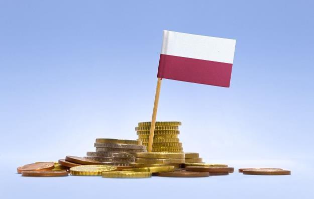 Niemcy są najważniejszym partnerem gospodarczym Polski /©123RF/PICSEL