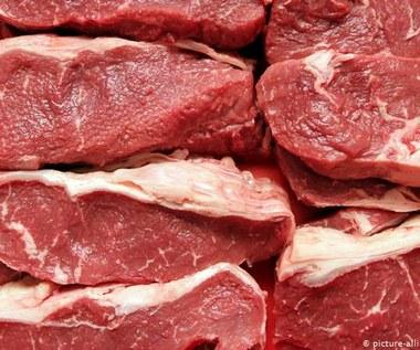 Niemcy: Tanie mięso kością niezgody