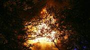 Niemcy: Tragiczny pożar w kwaterze turystycznej. Sześć osób zginęło w płomieniach