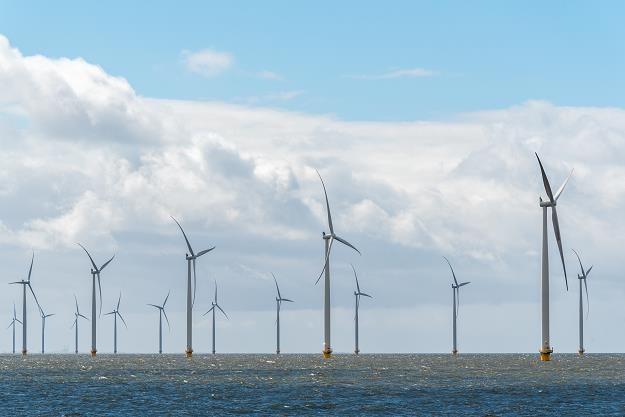 Niemiecka firma chce budować farmy wiatrowe w Polsce /©123RF/PICSEL