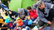 Niemiecki kontrwywiad ostrzega: Islamscy radykałowie mogą rekrutować uchodźców