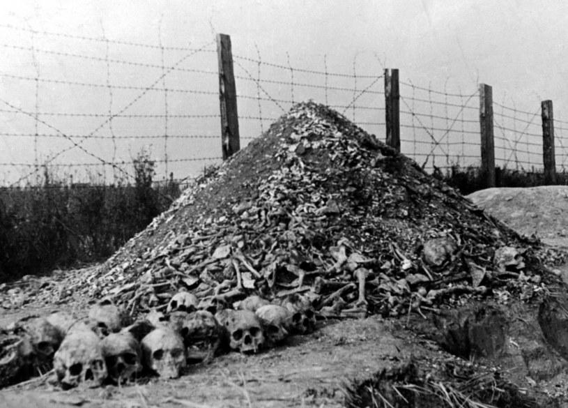 Niemiecki obóz zagłady Majdanek. Zdjęcie z 1944 roku /AFP