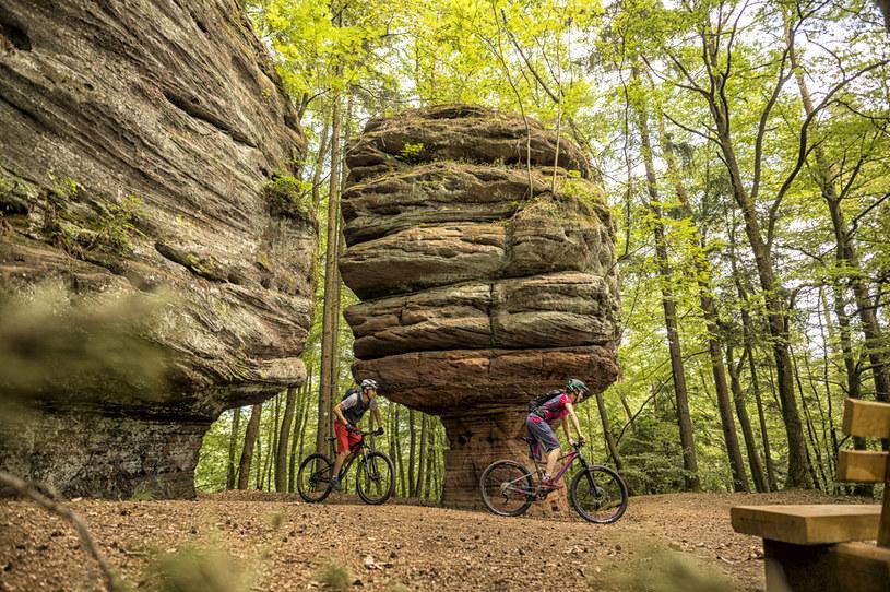 Niemieckie trasy rowerowe należą do najlepszych w Europie / fot. Andreas Meyer, World of MTB /materiały promocyjne