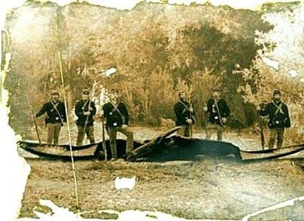 Niepewnego pochodzenia zdjęcie przedstawiające amerykańskich żołnierzy z końca XIX w. z zastrzelonym /MWMedia