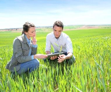 Nieprecyzyjne przepisy ustawy o obrocie ziemią rolną. Czy nabywca może się jej pozbyć?