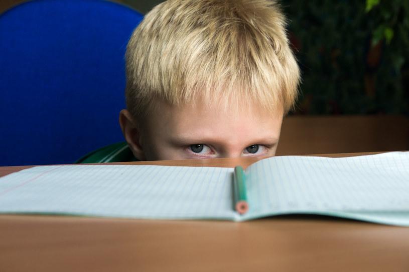 Nierówności między dziećmi. Polska na 27. miejscu w rankingu /123RF/PICSEL
