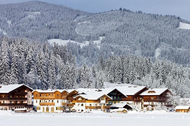 Nieruchomości w Alpach /©123RF/PICSEL