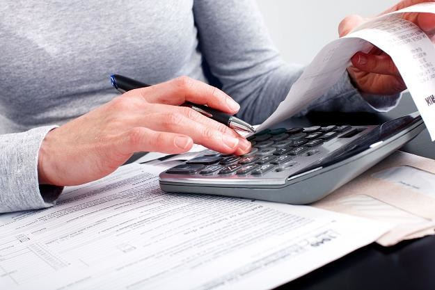 Nierzetelni dłużnicy podatkowi zapłacą fiskusowi niższe odsetki /©123RF/PICSEL
