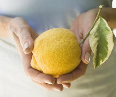 Niesamowite właściwości mrożonych cytryn