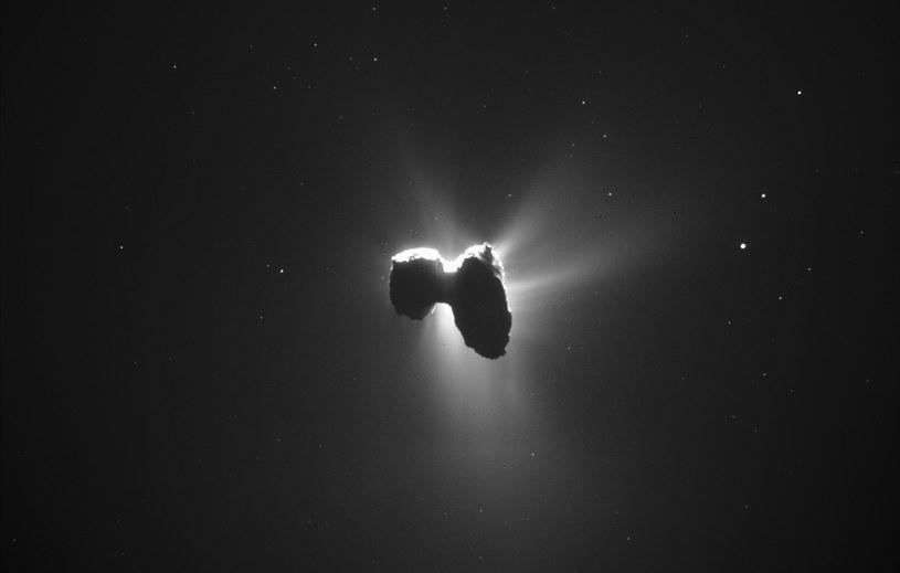 Niesamowite zdjęcie komety 67P /materiały prasowe