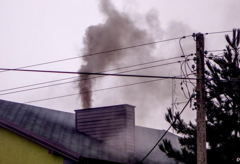 Niestety, Polacy nadal palą w piecach czym popadnie... /Piotr Kamionka /Reporter