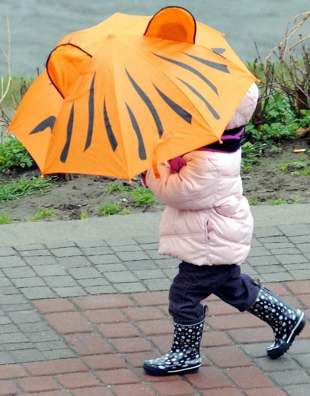 Niestety, w niedzielę w niektórych regionach będziemy musieli korzystać z parasoli / Darek Delmanowicz    /PAP