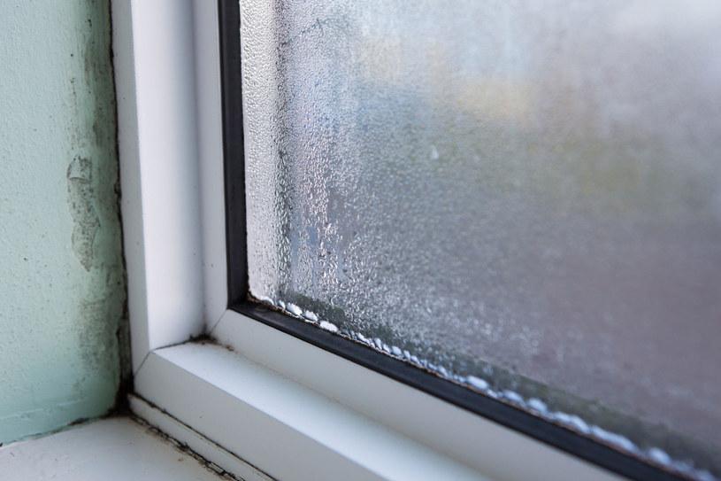 Nieszczelne okna są główną przyczyną przenikania smogu do naszych domów /123RF/PICSEL
