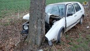 Nietrzeźwy kierowca uderzył w drzewo