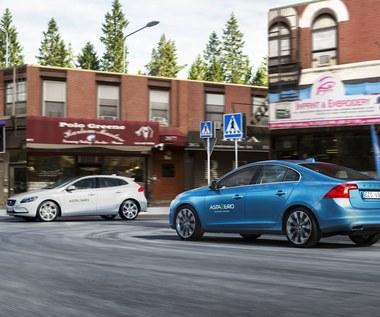 Nietypowa inicjatywa Volvo. Wybudowali miasteczko!