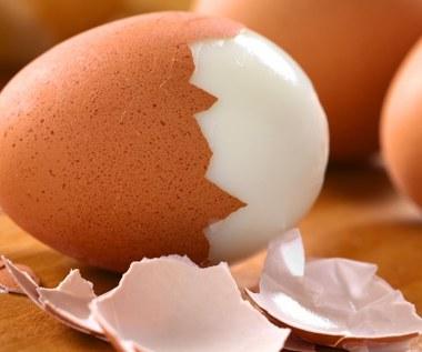 Nietypowe zastosowania i właściwości skorupek z jajek