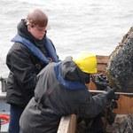 Nietypowe znalezisko na dnie Bałtyku