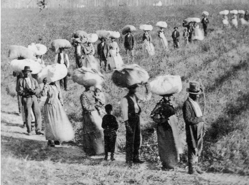 Niewolnicy na plantacji w Karolinie Południowej około 1860 /Getty Images