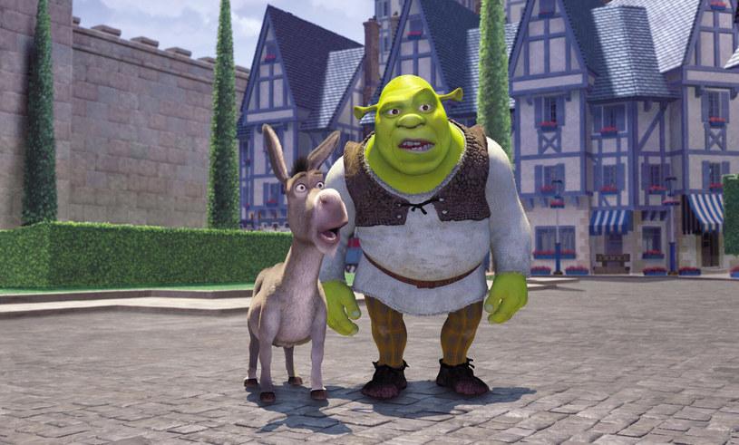 Niezaponiany duet, czyli Osioł i Shrek /DreamWorks/Courtesy Everett Collection /East News
