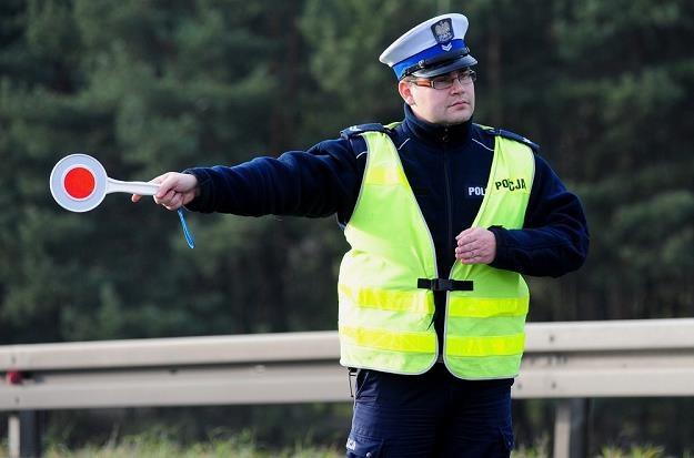 Nieznajomość przepisów nie jest tłumaczeniem / Fot: Paweł Skraba /Reporter