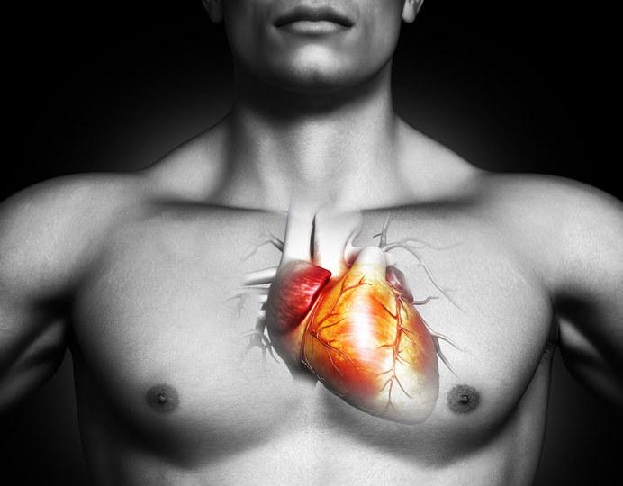 Niezwykła mutacja sprawia, że w piersi niektórych osób biją dwa serca /123RF/PICSEL