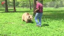 Niezwykła przyjaźń między niedźwiedziami a człowiekiem