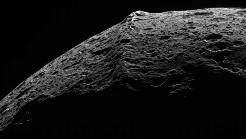 Niezwykła struktura powierzchni Japeta /NASA
