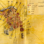 Niezwykłe odkrycie koło Chojnowa. Szczątki najstarszego szamana?