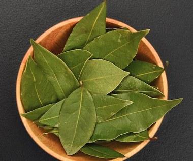 Niezwykłe zastosowanie liści laurowych