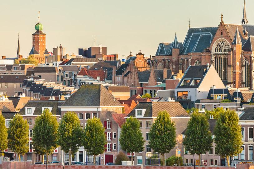 Nijmegen Zieloną Stolicą Europy 2018 /123RF/PICSEL