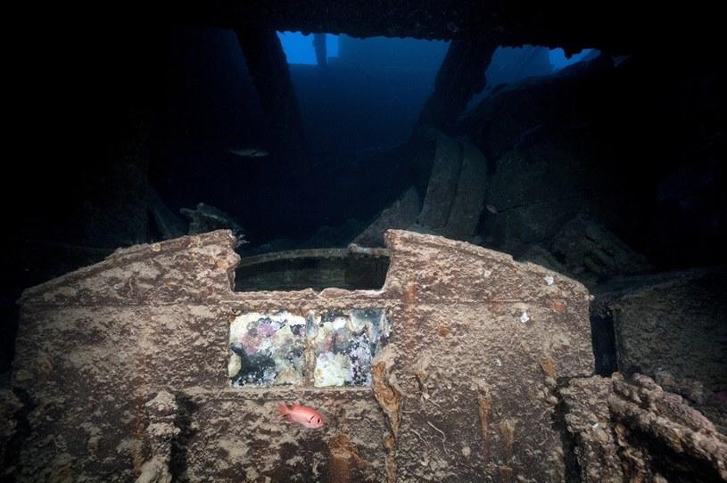 NIK zwraca uwagę, że wciąż nie opracowano metodyki i techniki szacowania ryzyka związanego ze skażeniem środowiska morskiego /123RF/PICSEL