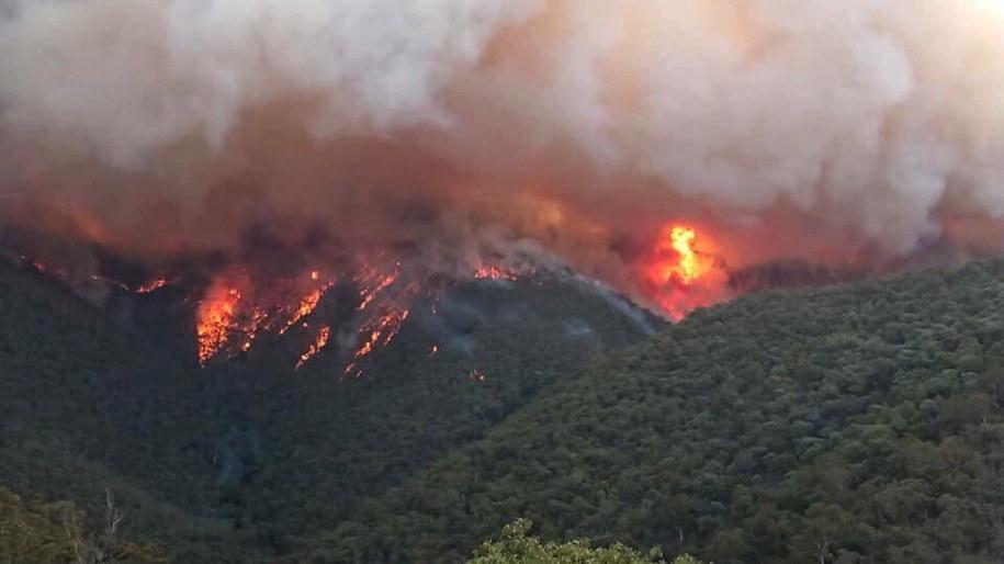 Nikt nie potrafi przewidzieć, kiedy uda się opanować pożary w Australii /DELWP GIPPSLAND HANDOUT /PAP/EPA