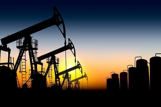 Niska cena ropa to zagrożenie dla stabilności współczesnego świata? /©123RF/PICSEL