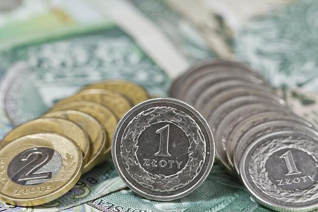 Niska inflacja uzasadnia obniżkę stóp procentowych NBP w marcu, fot. Leszek Kotarba /Agencja SE/East News