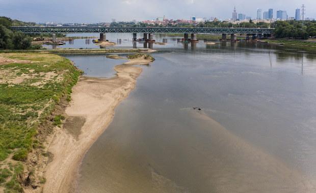 """Niski poziom rzek w całym kraju. """"Sytuacja jest coraz trudniejsza"""""""