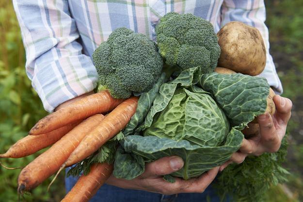 Niskie zapasy warzyw zrobiły swoje /©123RF/PICSEL