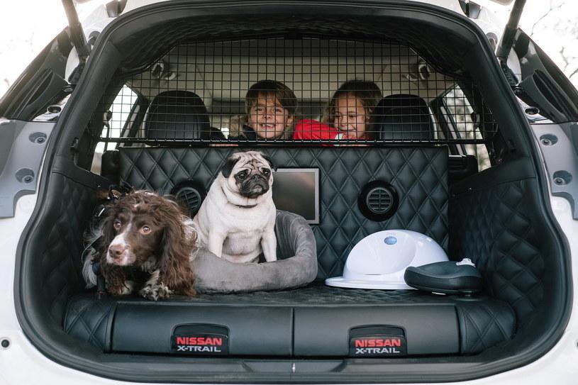 Nissan X-Trail dla psów /