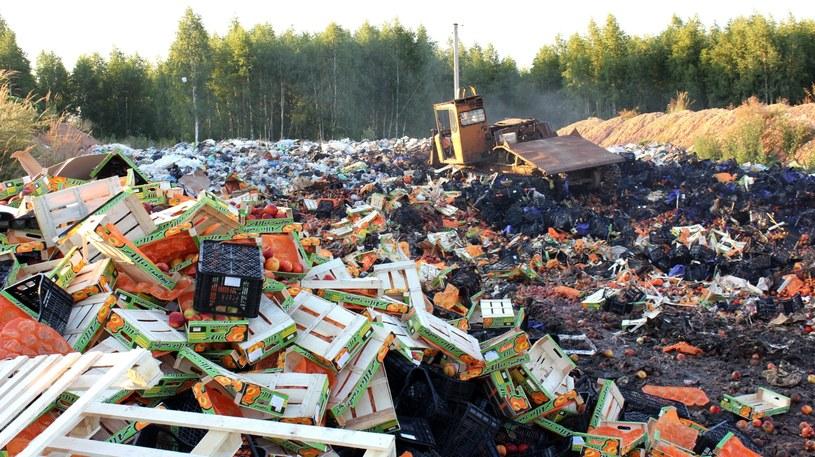 Niszczenie żywności /PAP/EPA