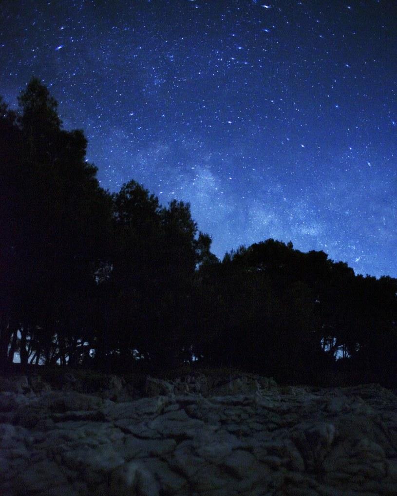 Nocny krajobraz gwiazd /Sinia Glogoki /123RF/PICSEL