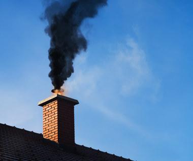 Nocuń: Kowalski ma płacić za CO2 jak ciepłownia