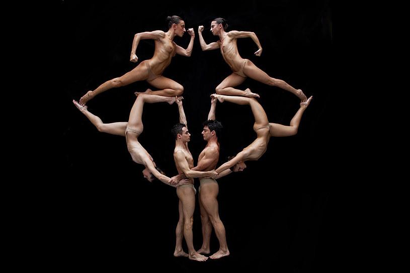 NoGravity Dance Company to teatr specjalizujący się w tańcu powietrznym /Styl.pl/materiały prasowe