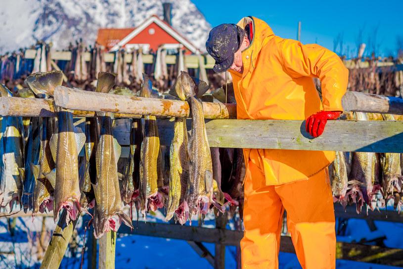 Norwegowie od wieków trudnią się połowem ryb i nie tylko /123RF/PICSEL