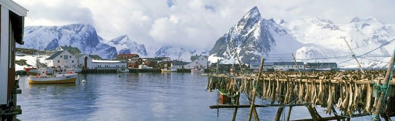 Norweskie krajobrazy - piękne i mroczne jednocześnie /East News