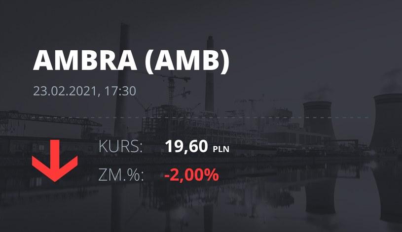 Notowania akcji spółki Ambra z 23 lutego 2021 roku