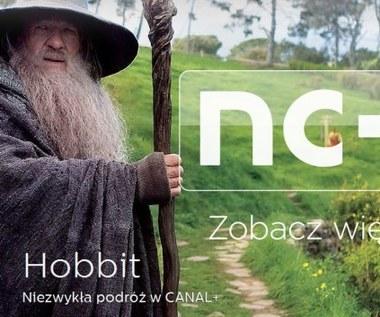 Nowa oferta platformy nc+