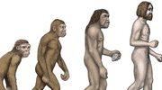 Nowa teoria pochodzenia człowieka