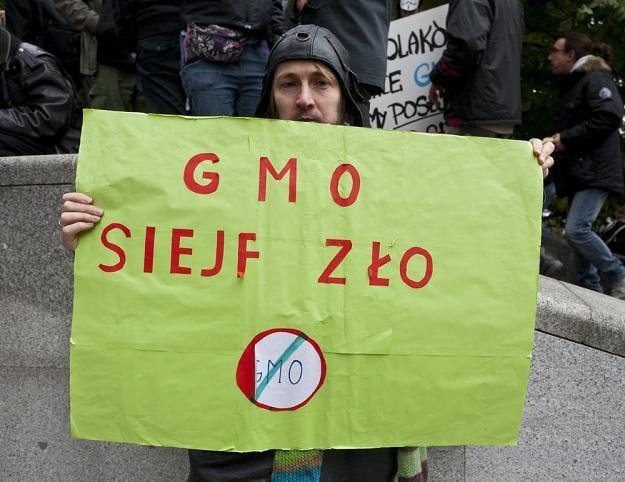 Nowa ustawa o nasiennictwie zawiera dwie regulacje dotyczące GMO, fot. Krystian Maj /Reporter